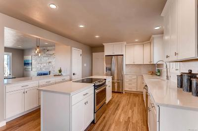 Longmont Single Family Home Active: 11241 Lookout Road
