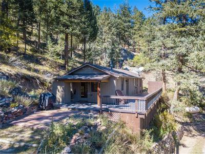 Evergreen Single Family Home Under Contract: 249 Mesa Drive