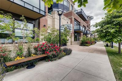 Boulder Condo/Townhouse Active: 1077 Canyon Boulevard #207