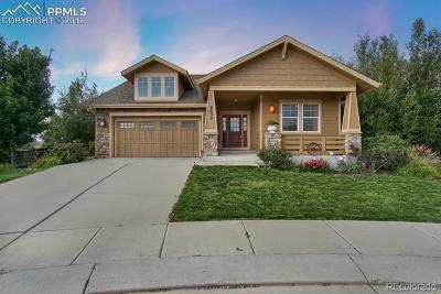 Colorado Springs Single Family Home Active: 6652 Big Leaf Lane