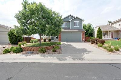 Douglas County Single Family Home Active: 595 Branding Iron Lane
