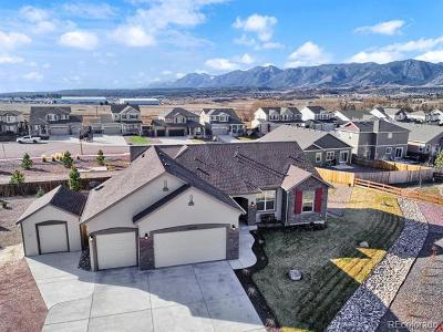 Monument Single Family Home Active: 16760 Buffalo Valley Path