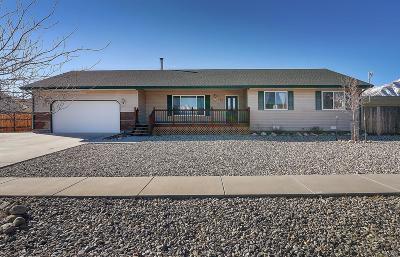 Buena Vista Single Family Home Under Contract: 87 Tammie Drive