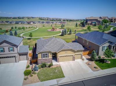 Cobblestone Ranch Single Family Home Under Contract: 7953 Grady Circle
