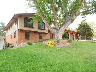 Denver CO Single Family Home Active: $600,000