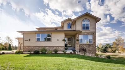 Monument Single Family Home Active: 1325 Bowstring Road