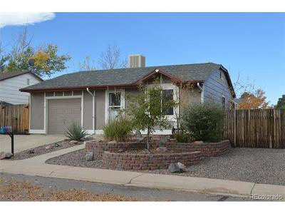 Single Family Home Sold: 3849 South Truckee Way