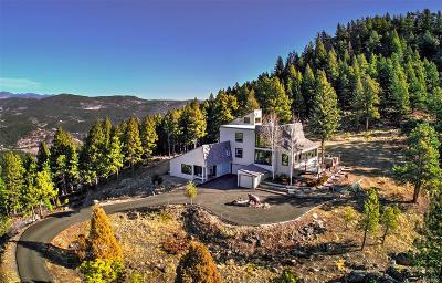 Evergreen Single Family Home Under Contract: 26263 Independence Trail