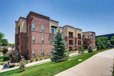 Englewood Condo/Townhouse Active: 303 South Inverness Way #302