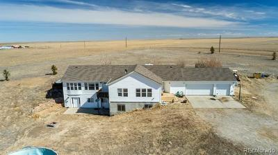 Strasburg Single Family Home Active: 13125 Pass Me By Road
