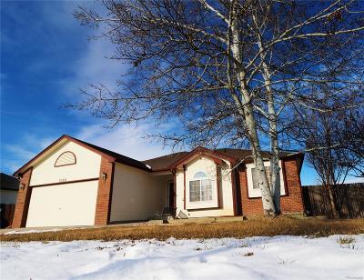 Mead Single Family Home Active: 2589 Jarett Drive