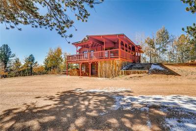 Single Family Home Active: 79 Beaver Creek Circle