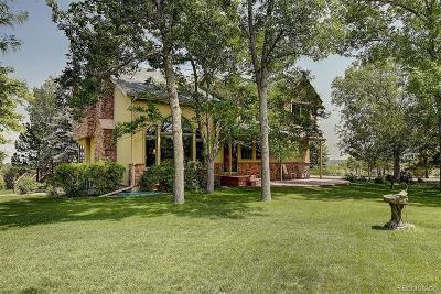 Elbert County Single Family Home Active: 1343 Shoshone Trail