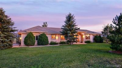 El Paso County Single Family Home Active: 19773 Kershaw Court