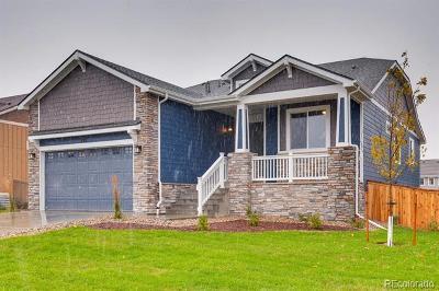 Castle Rock Single Family Home Active: 293 Calhoun Circle