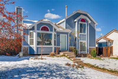 Castle Rock Single Family Home Under Contract: 9 Quicksilver Avenue