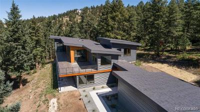 Evergreen Single Family Home Active: 6448 South Skyline Drive