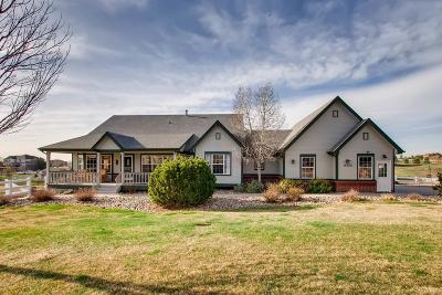 Brighton Single Family Home Active: 10050 East 148th Place