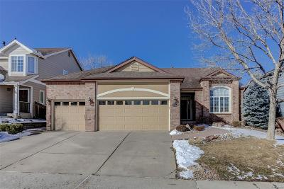 Highlands Ranch Single Family Home Under Contract: 9541 Painted Canyon Circle