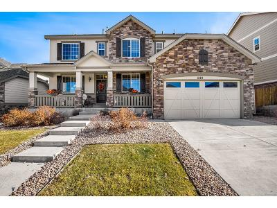 Arapahoe County Single Family Home Active: 6172 South Jackson Gap Court