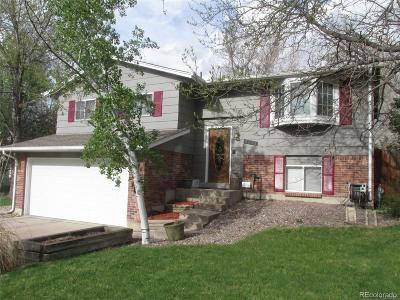 Denver CO Single Family Home Active: $417,000