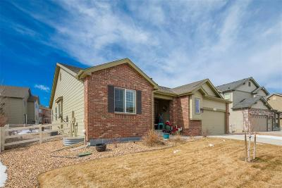 Crystal Valley Ranch Single Family Home Under Contract: 4119 Eagle Ridge Way