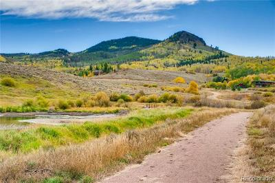 Residential Lots & Land Active: 31480 Shoshone Way