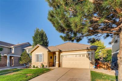 Buffalo Run Single Family Home Under Contract: 11708 Fairplay Street