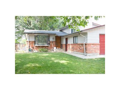 Longmont Single Family Home Under Contract: 640 Buchanan Lane