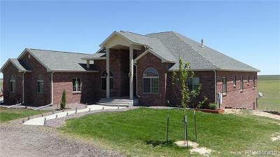 Arapahoe County Single Family Home Active: 5504 South Lilly Creek Court