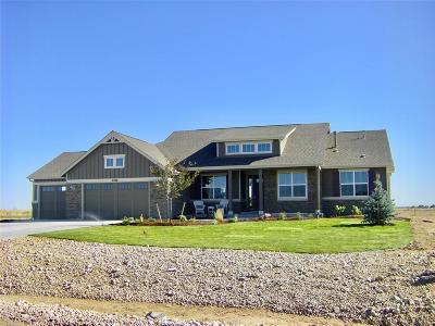 Hudson Single Family Home Active: 31480 East 161st Court