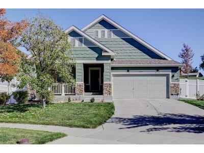 Aurora Single Family Home Active: 1244 South Richfield Court