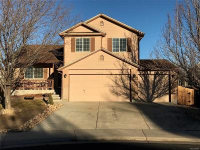 Henderson Single Family Home Under Contract: 11575 River Run Court