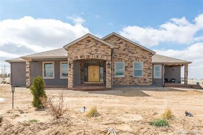 Adams County Single Family Home Active: 16765 Electra Street