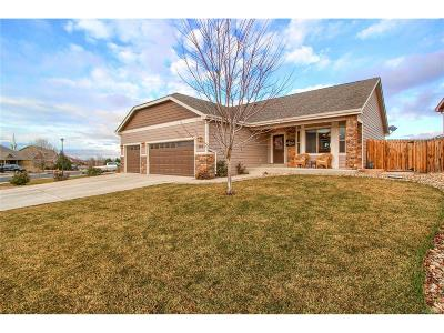 Johnstown Single Family Home Active: 289 Sloan Drive