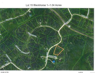 Residential Lots & Land Active: 20955 Filly Trail