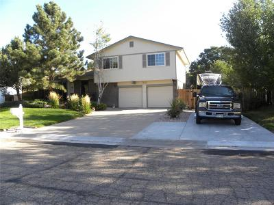 Arvada Single Family Home Active: 6594 West 85th Avenue