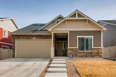 Denver Single Family Home Active: 4648 Walden Way