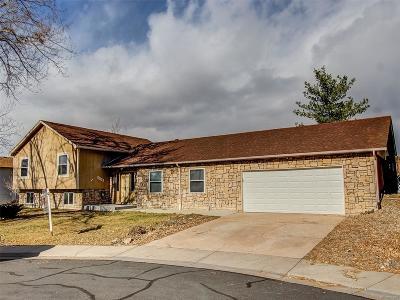 Castle Rock Single Family Home Under Contract: 1010 Park View Court