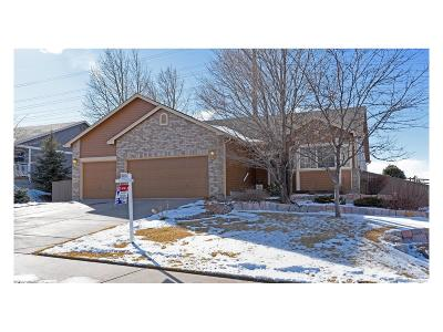 Castle Rock Single Family Home Under Contract: 1457 Rosedale Street