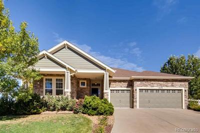 Castle Rock Single Family Home Active: 4234 Eagle Tail Lane