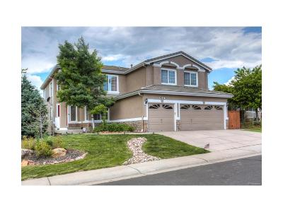 Highlands Ranch Single Family Home Active: 9237 Ironwood Way