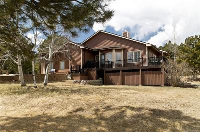 Woodmoor Single Family Home Active: 19725 Indian Summer Lane