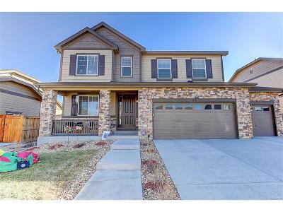 Aurora Single Family Home Active: 48 North Irvington Street