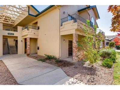 Centennial Condo/Townhouse Under Contract: 8621 East Dry Creek Road #312