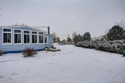 Lochbuie Single Family Home Active: 611 Pinyon Circle