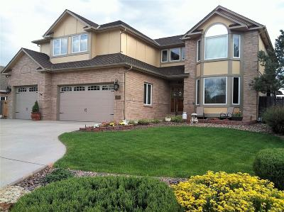 Longmont Single Family Home Under Contract: 1195 Twin Peaks Circle