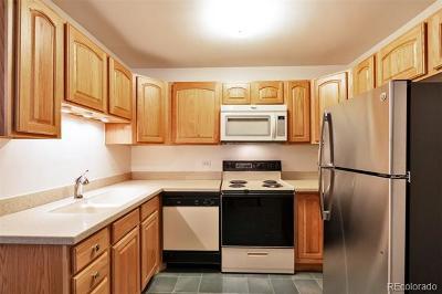 Denver Rental Active: 350 South Clinton Street #12A