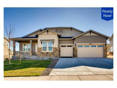 Aurora Single Family Home Active: 27810 East Links Place