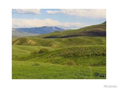 Steamboat Springs Single Family Home Active: 22982 Routt County Road 54
